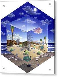 Desert On My Mind Acrylic Print by Snake Jagger