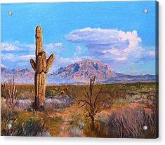 Desert Scene 4 Acrylic Print