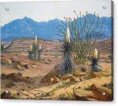 Desert Streams Acrylic Print by Rick Mittelstedt