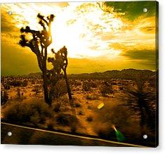 Desert Sunset Acrylic Print by Aurica Voss