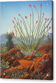 Desert Symphony Acrylic Print by Rick Mittelstedt