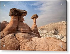 Acrylic Print featuring the photograph Desert Toadstool Hoodoos by Mike Irwin