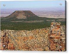 Desert Watch Tower View Acrylic Print by Julie Niemela