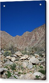 Desertscape Acrylic Print by Steve Huang