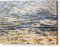Designs By Nature - Ripples Acrylic Print