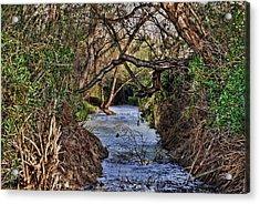 Desolation Creek Hdr Acrylic Print