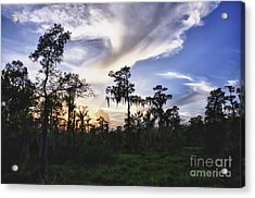 Destrehan Swamp Sunset Acrylic Print by Jeanne  Woods