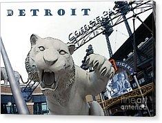 Detroit Tigers I Acrylic Print by Linda  Parker