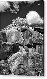 Devil's Den - 39 Acrylic Print by Paul W Faust -  Impressions of Light