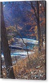 Devils Den State Park Creek Acrylic Print by Patty Vicknair