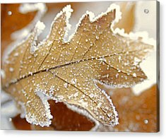 Diamonds And Rust Acrylic Print by The Forests Edge Photography - Diane Sandoval