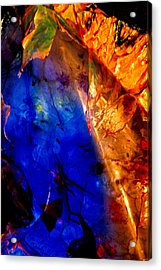 Dichotomy 2 Acrylic Print by Colleen Cannon
