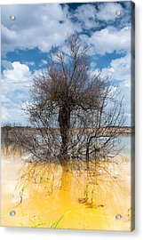 Acrylic Print featuring the photograph Die Standing by Edgar Laureano