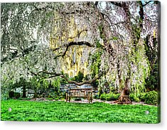 Digital Liquid -  Cherry Blossoms At The Washington National Cathedral Acrylic Print by Metro DC Photography