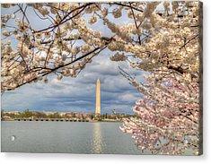 Digital Liquid - Cherry Blossoms Washington Dc 4 Acrylic Print by Metro DC Photography