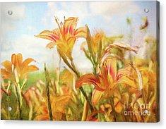 Digital Painting Of Orange Daylilies Acrylic Print by Sandra Cunningham