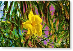 Acrylic Print featuring the digital art Digital Painting Of Yellow Orchid by John  Kolenberg