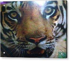 Digitalphoto Acrylic Print by Indrani Moitra