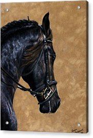 Dignified Acrylic Print