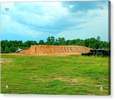 Dirt Hill  Acrylic Print by Ester  Rogers