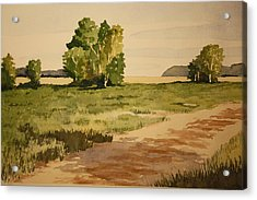 Dirt Road 1 Acrylic Print by Jeff Lucas