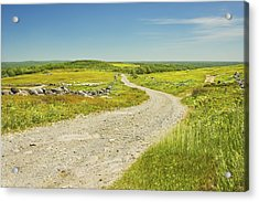 Dirt Road Going Through Large Blueberry Field Maine Acrylic Print by Keith Webber Jr
