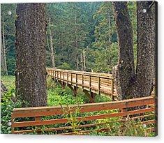 Discovery Trail Bridge Acrylic Print by Pamela Patch