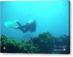 Diver By Rocks On Ocean Floor Acrylic Print by Sami Sarkis