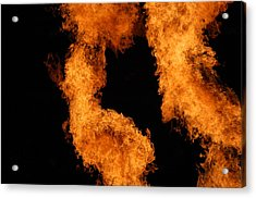 Divine Fire Acrylic Print by Michelle Visconti