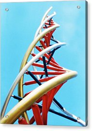 Dna Sculpture Acrylic Print by Victor Habbick Visions
