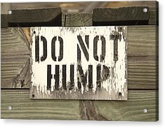 Do Not Hump Acrylic Print by Mike McGlothlen
