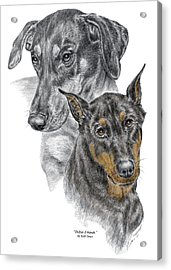 Acrylic Print featuring the drawing Dober-friends - Doberman Pinscher Portrait Color Tinted by Kelli Swan