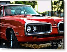 Dodge Super Bee Classic Red Acrylic Print by Paul Ward