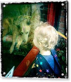 Dog In Window Acrylic Print