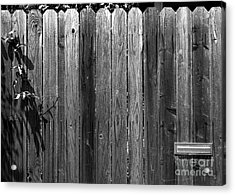 Dog Inside. Leave Mail In Yard. Acrylic Print by CML Brown