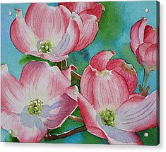 Dogwood Afternoon Acrylic Print