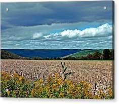 Acrylic Print featuring the photograph Done For Another Season by Christian Mattison