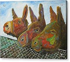 Donkey Doo Acrylic Print by Don  Hester