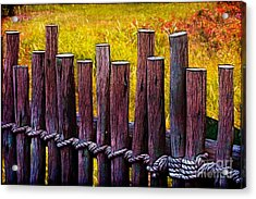 Don't Fence Me In Acrylic Print by Judi Bagwell