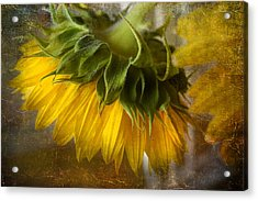 Don't Weep For Me Acrylic Print