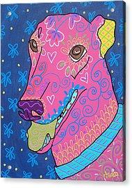 Doodle Greyhound Acrylic Print by Audra Sampson