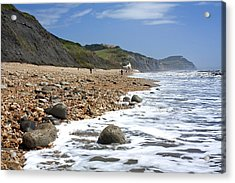 Acrylic Print featuring the photograph Dorset Coast by Shirley Mitchell
