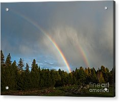 Acrylic Print featuring the photograph Double Blessing by Cheryl Baxter