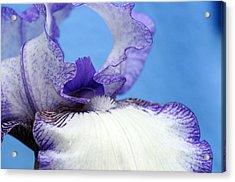 Double Delight Acrylic Print by Wanda Brandon