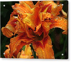 Acrylic Print featuring the photograph Double Lily by Michael Friedman