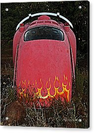 Acrylic Print featuring the photograph Down In Flames by Cheri Randolph