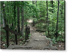 Down The Trail Acrylic Print by CGHepburn Scenic Photos