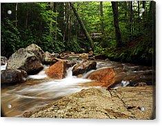 Downstream At The Basin Acrylic Print by David Gilman