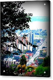 Acrylic Print featuring the photograph Downtown View From Hamilton Mountain  by Danielle  Parent