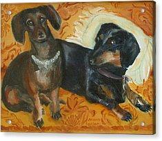 Doxie Duo Acrylic Print by Susan Hanlon